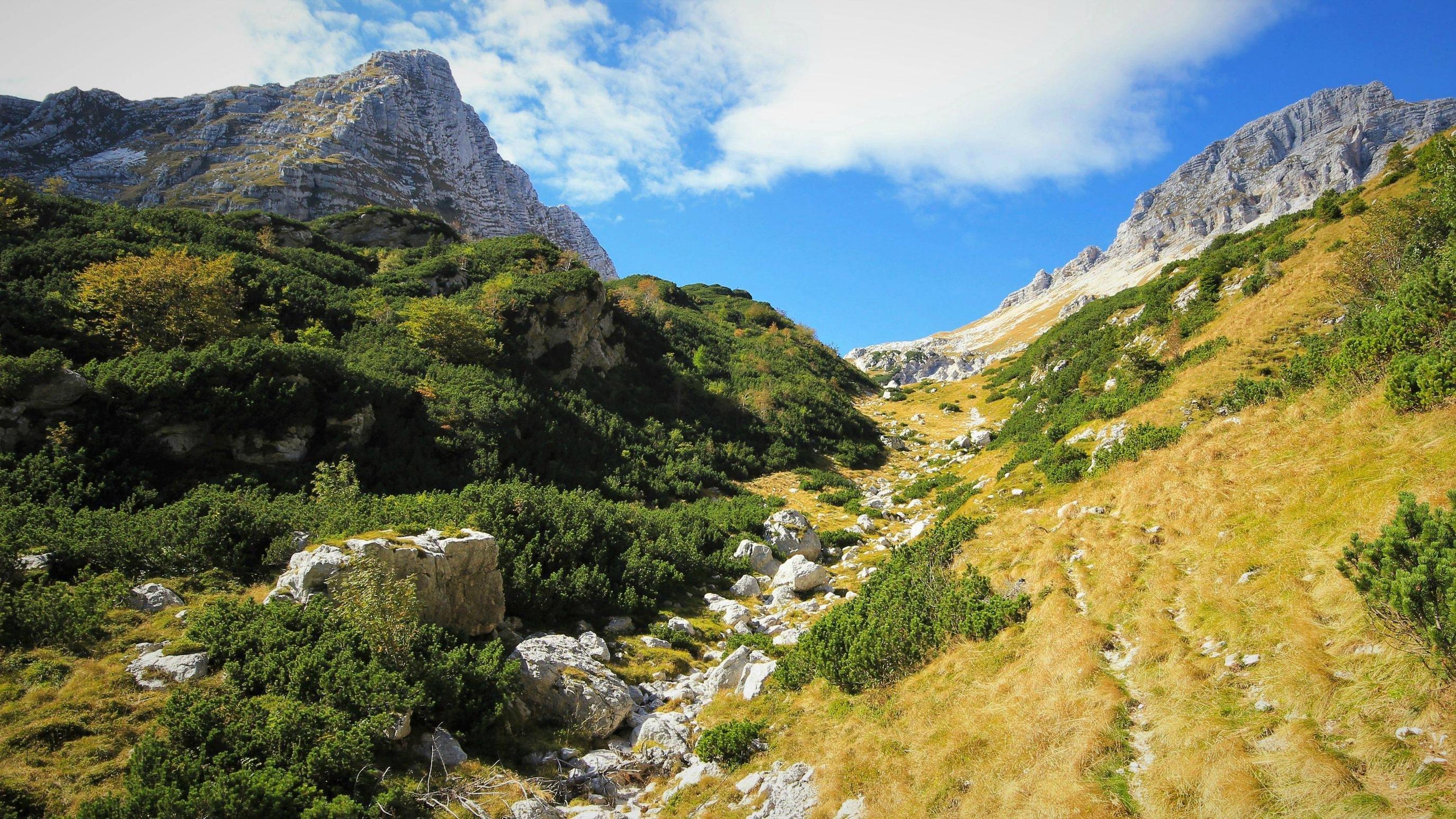 Fall Wallpaper Hd For Galaxy S4 Early Fall In The Julian Alps Kanin Area Hd Wallpaper