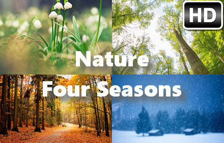 Puppies In Fall Wallpaper Spring Summer Fall Winter Nature Four Seasons Free Addons