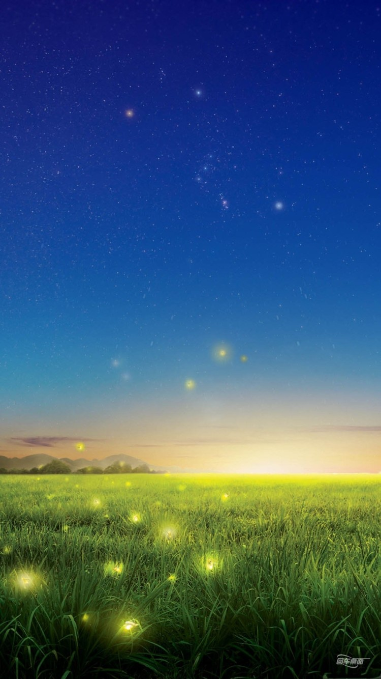 Field Fireflies Wallpaper Free Iphone Wallpapers