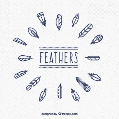 Free Vector Cute Feathers Collection