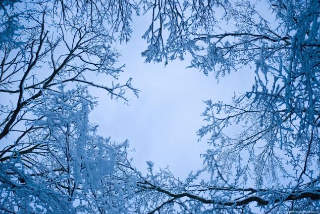 Free Animated Desktop Wallpaper Like Snow Falling On Background Blue Snow