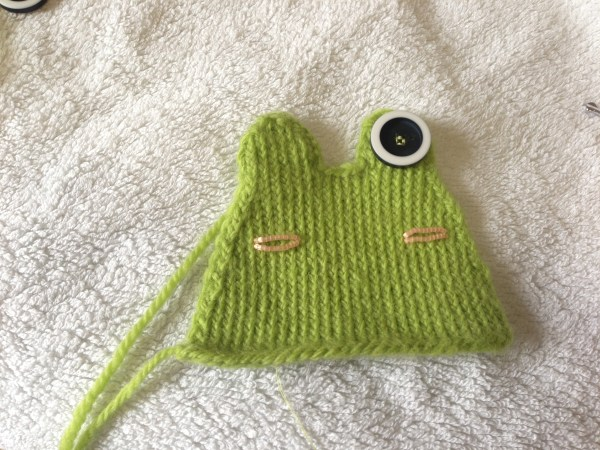 Frog with one eye sewn on