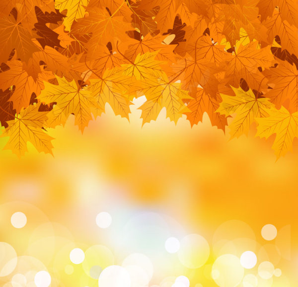 Fall of maple leaf elements background vector 06 \u2013 Over millions