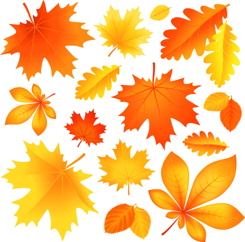 What Is Falling Action Of The Yellow Wallpaper Beautiful Autumn Leaves Vector 02 Free Download