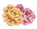 Peony Flower Graphic