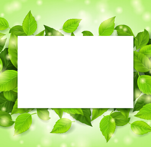 Green leaves frame vectors set 02 free download