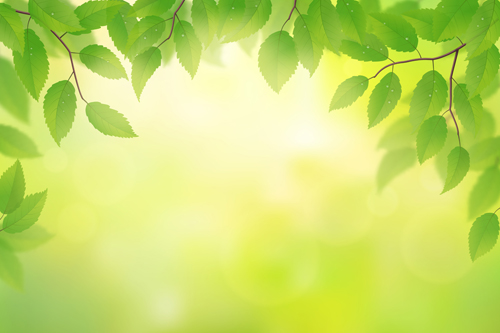 3d Fire Name Wallpaper Spring Sunlight With Green Leaves Vector Background 05