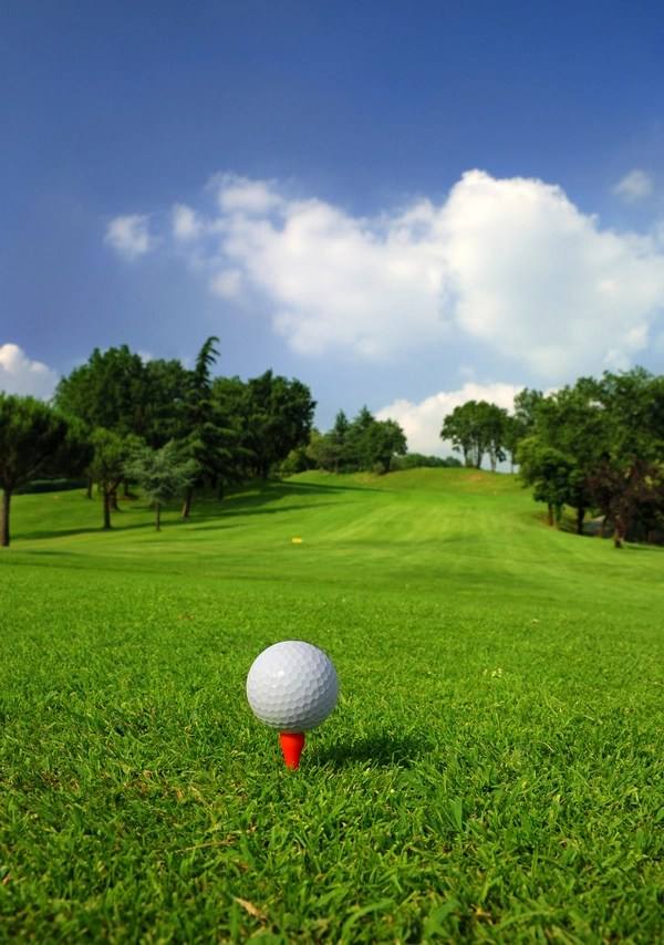 3d Action Wallpaper Hd Golf Ball On Green Grass With Golf Course Background 01