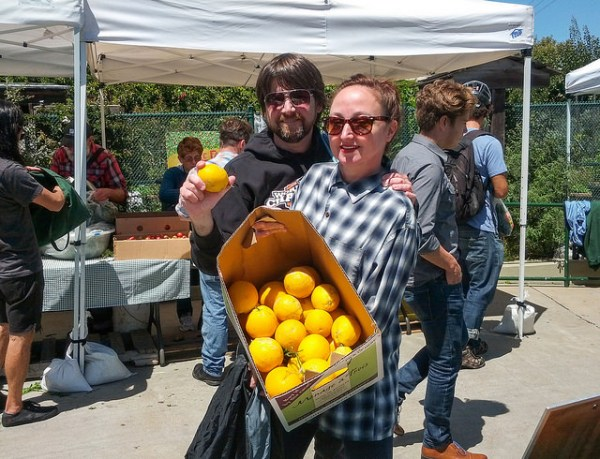 neibors with oranges