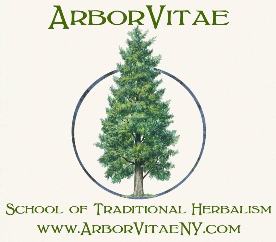 ArborVitae herb school logo +url