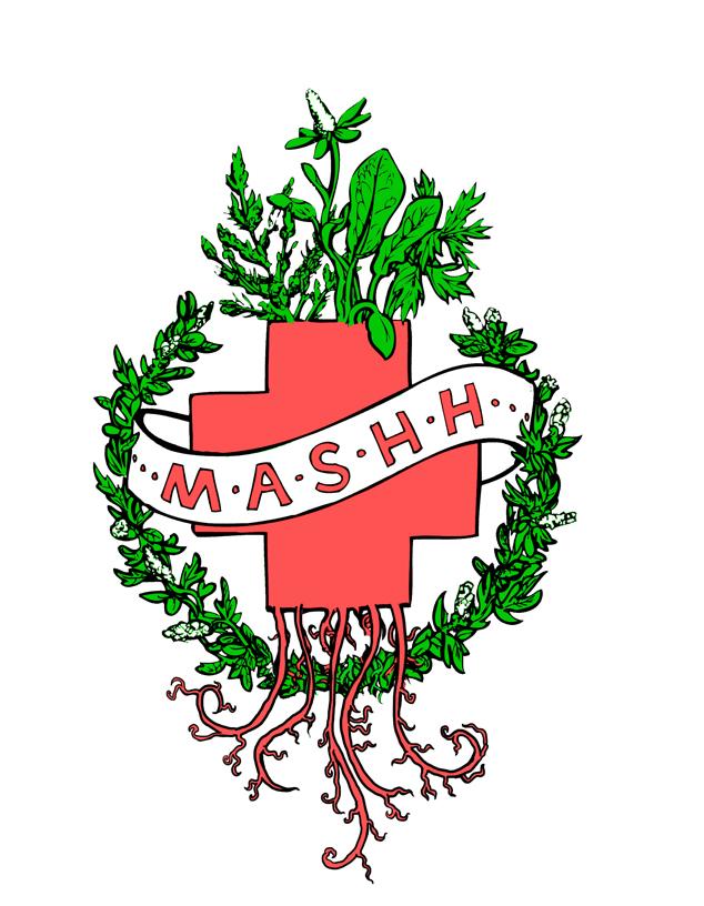 MASHH 2