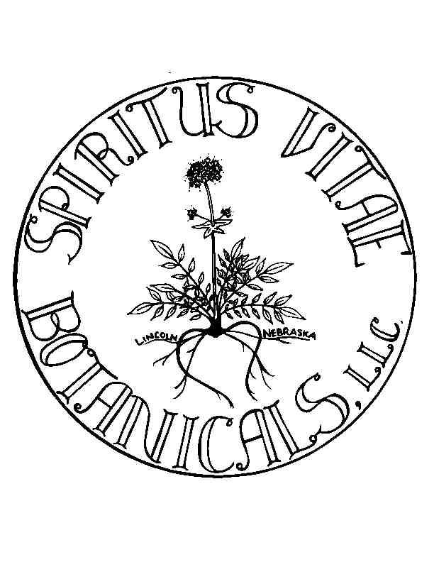 SVB-Logo-FINAL