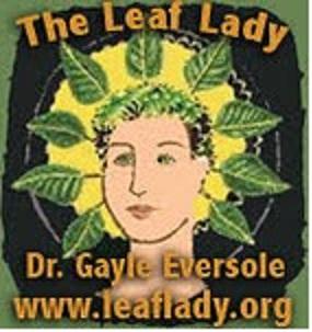 leafladyc1a