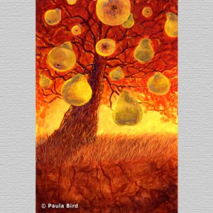 'Pear Tree' by Paula Bird