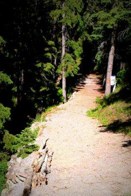 Natural trail at St. Francis