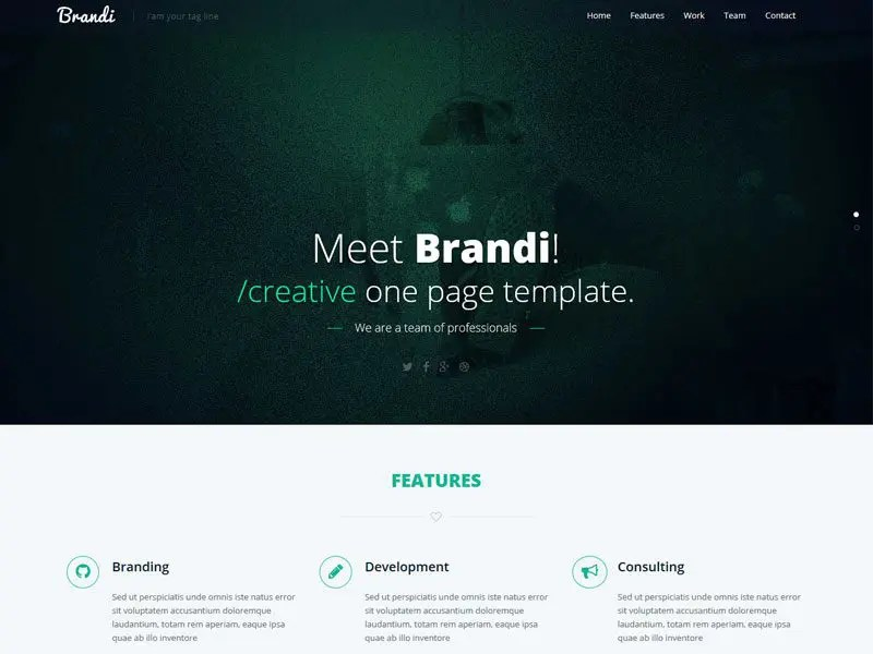 Brandi Free One Page HTML5 Business Template - html5 template tag