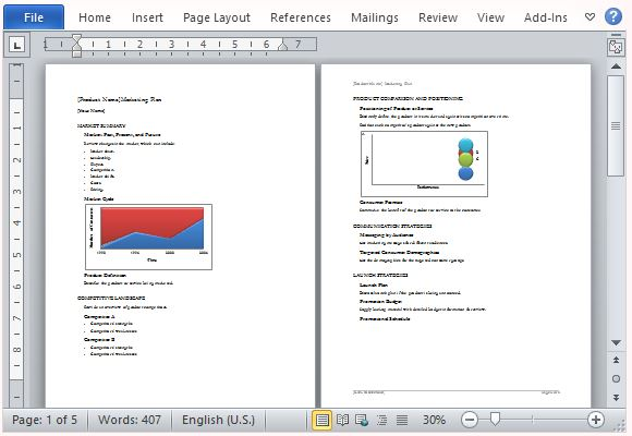 Business Marketing Plan Template for Microsoft Word