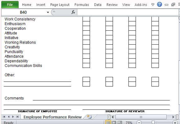 Performance Review Template for Microsoft Excel