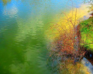 AUTUM PICTURES: Beautiful landscape - autumn river-1648x1648