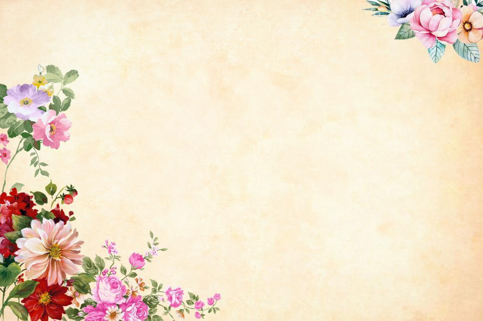 Card Wallpaper Hd Get Free Stock Photos Of Flower Background Light Cream
