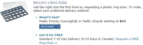 Blue Nile Free Ring Sizer - Canada and US