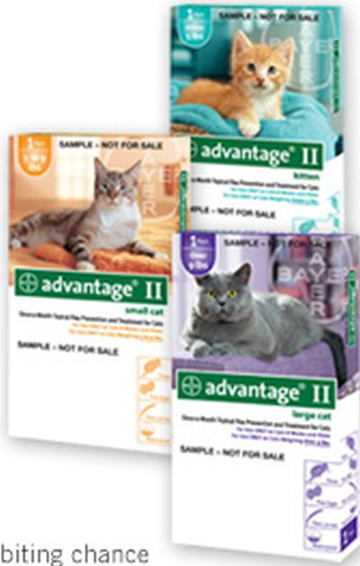 Advantage ii for cats coupons