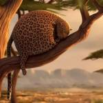 What if Wild Animals ate Fast Food (Video)