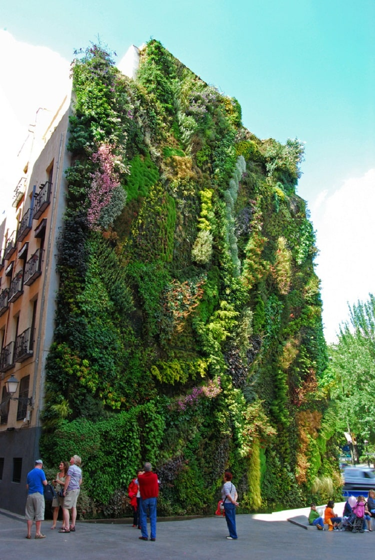 Vertical-Garden.-By-Patrick-Blanc-in-Madrid-Spain