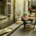 Color Photographs of Paris of the 1950′s