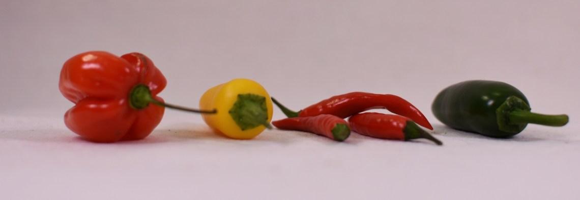 Chilisorten Rot gelb grün