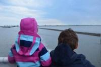 Jever und die Seehundbnke - Freilerner-Familie
