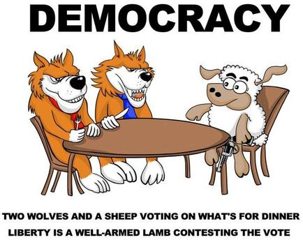 lamb-democracy