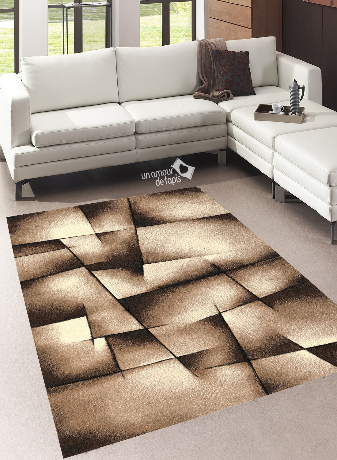 Tapis De Salon Beige Et Marron Novocom Top
