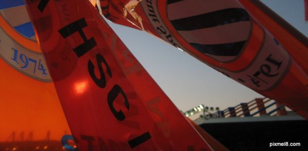 MHSC Flags