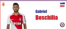 Boschilia ASM