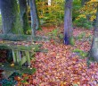 Autumn in Alsace, France © French Moments