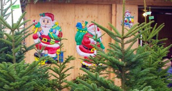 Christmas tree market in Maisons-Laffitte, France © French Moments