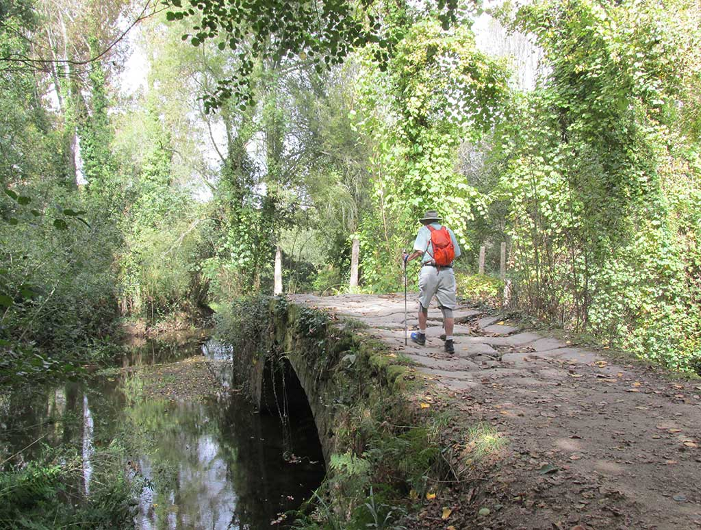 Outdoor Kinder Camino De Santiago Photos And Guided Walking Tours From Fresco Tours