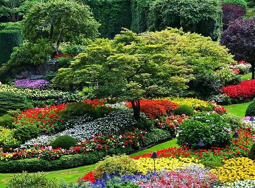 Schöner Garten - tolle Gartengestaltung und Gartendeko für Ästheten - schoner garten bilder
