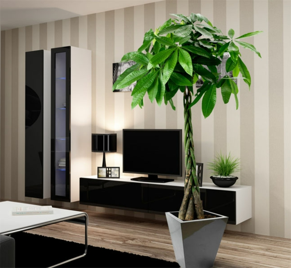 Pflanzen Wohnzimmer Schatten