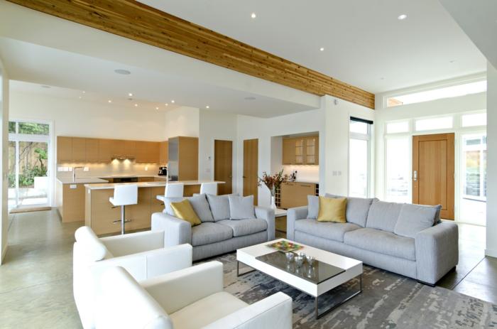 Funktionelles Wohnzimmer Design in die Tat umsetzen - inneneinrichtungsideen wohnzimmer kuche