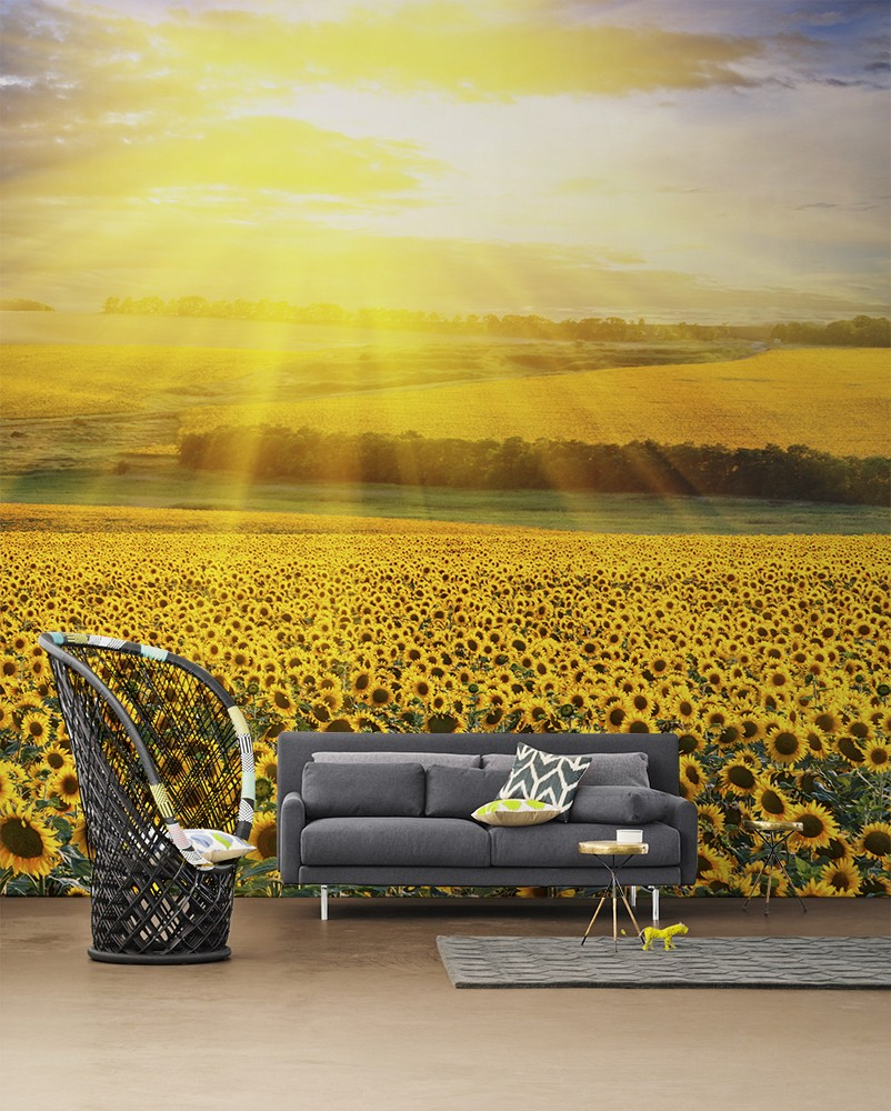 Wall Mural Ideas For Living Room Nature Inspired Eye Deceiving Wall Murals To Make Your Home Look
