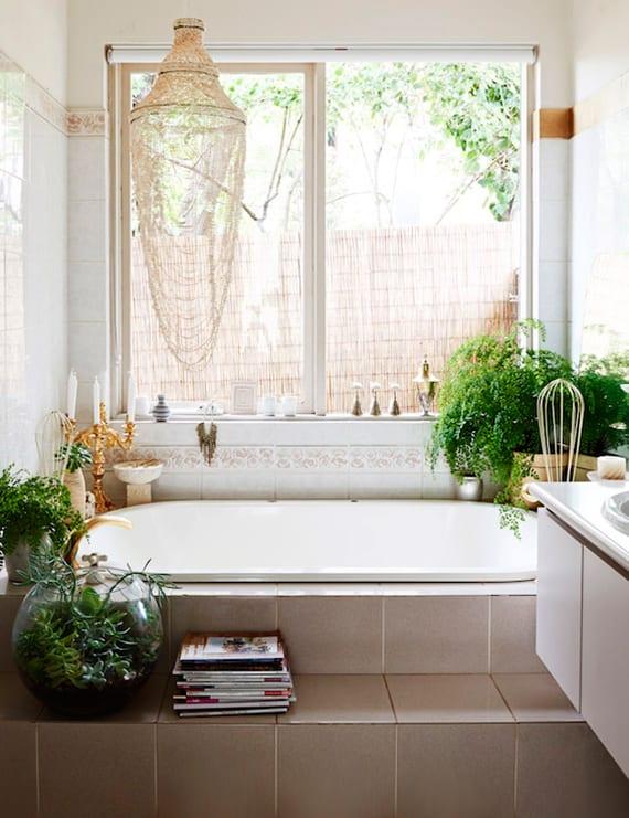 Kleine Pflanzen Für Badezimmer