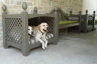 20 Cool Outdoor Dog Beds that Are Also Comfortable