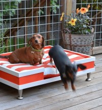 Diy Outdoor Dog Bed | www.imgkid.com - The Image Kid Has It!