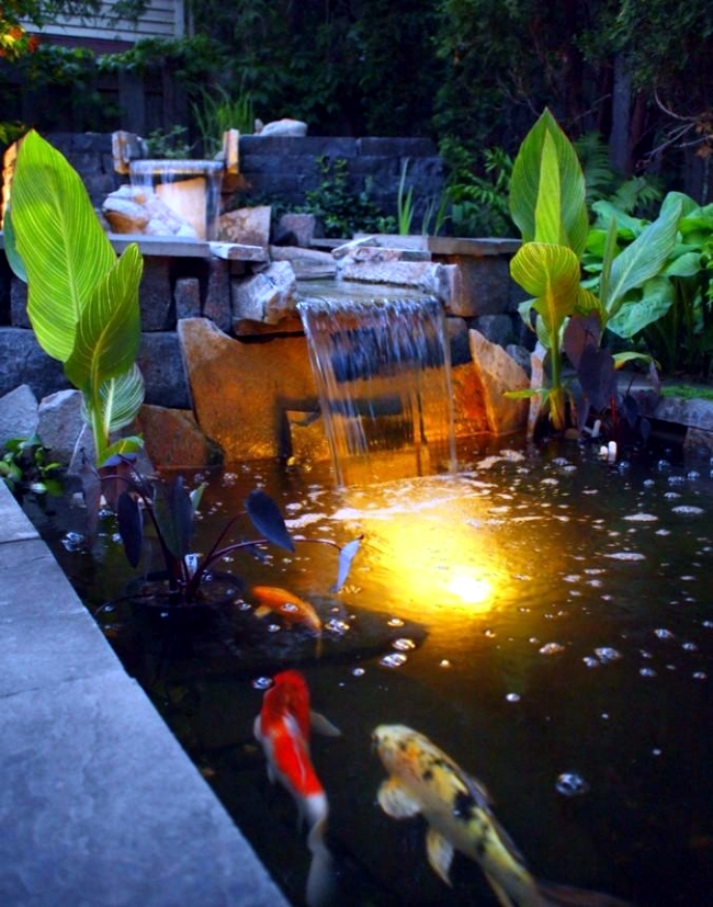 3d Brick Wallpaper South Africa Water Garden And Koi Pond Designs For The Backyard And Patio