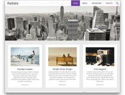 Radiate - Free Blogging Responsive WordPress Theme