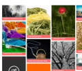 Tiles - Free Masonry WordPress Theme