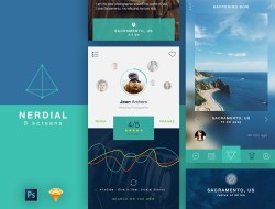 Nerdial App UI