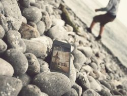 16 Free iPhone Mockups